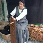 Combing Hebridean fleece ready for spinning